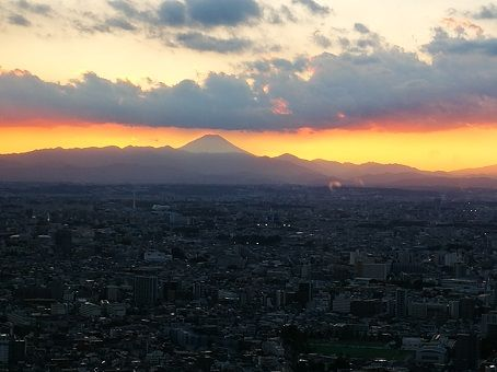 View of Mount Fuji from Tokyo