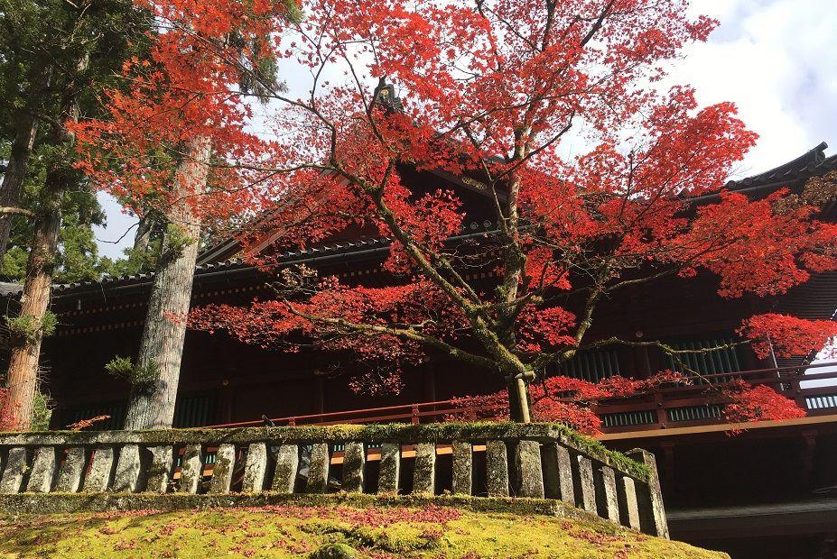 Japan in November