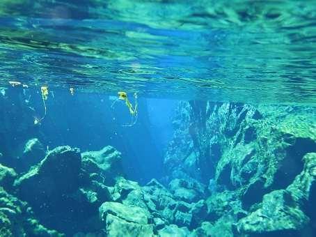 Underwater view in Silfra
